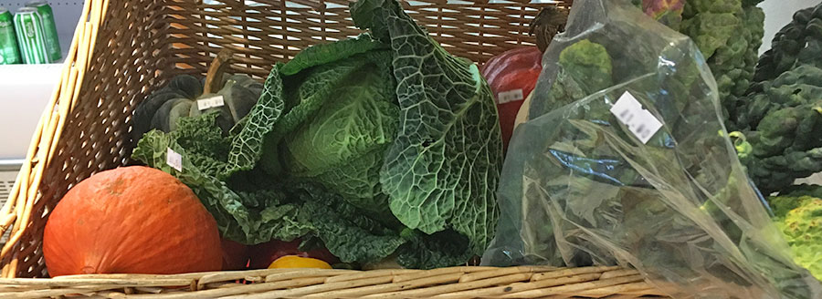 Organic Vegetables from Sandy Lane Farm